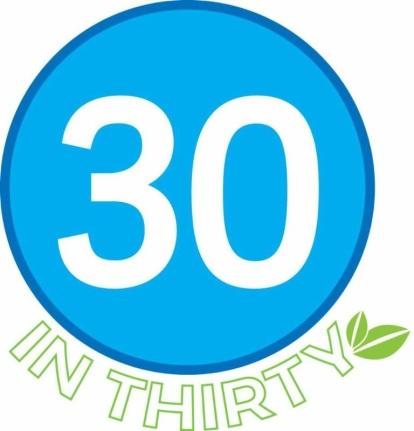30 in 30.jpg